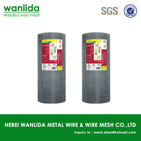 Low carbon steel 1/2 inch square hole welded wire mesh ( SGS )