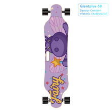 electric skateboards long board board with handles for sale