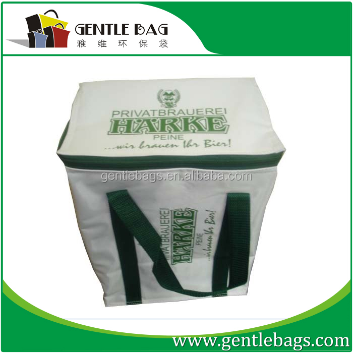 cooler bag with hard bottom