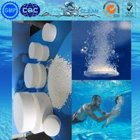 TCCA 90% ----- Chile Market Hot Selling swimming pool chemicals