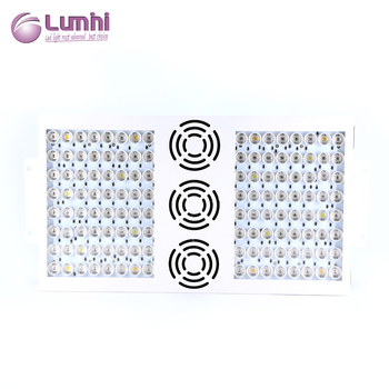 Hydroponic led grow lights digital warm white lumini grow DANK 1000 grow lamp for grow tent
