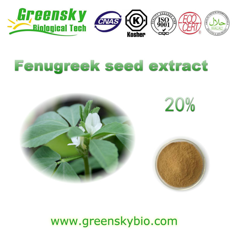 High Quality Fenugreek seed extract
