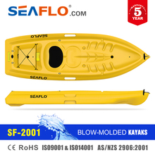 Double Seat Kayak Fishing Boat for Sale Malaysia