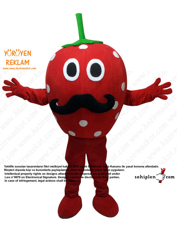 Fruit and Vegetable Mascot Costumes Custom Made