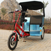 China city bike pedicab rickshaw for adult