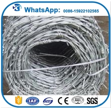 450mm coil diameter concertina electric galvanized/hot-dipped galvanized razor barbed wire