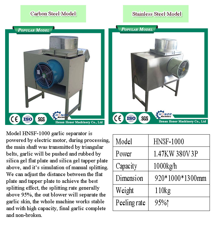 Garlic Onion Paste Grinder | Grinding Machine For Garlic
