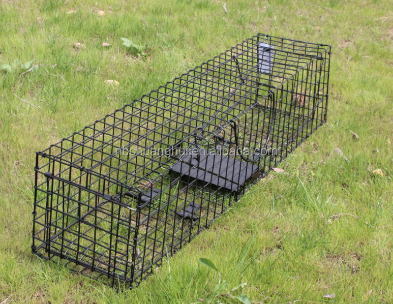 One-door Live Animal Cage Trap For Raccon,Stray Cat,