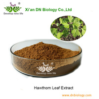 100% Natural fruit extracts hawthorn leaf extract/hawthorn extract from frsh hawthorn