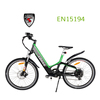 2013-2014 green city bike Europe design new mag alloy street legal electric bike