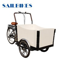 cargo motor tricycle with closed body