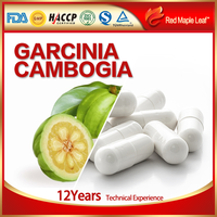 OEM Natural Max Slimming Products Garcinia Cambogia Extract Capsules
