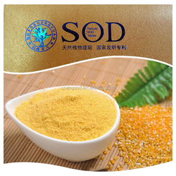 radiation reduction effect corn extract superoxide dismutase powder SOD enzyme ensure quality