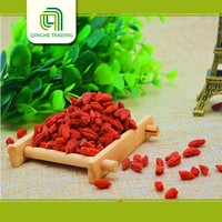 Hot selling organic dried goji berry with great price bocksdornbeeren