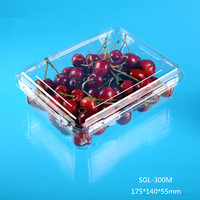 PLASTIC PACKING CONTAINER FOR CHERRY FRUIT