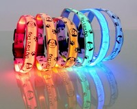 Newest promotional led collar dog