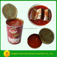 Best Canned Mackerel fish in tomato suce Wholesale 425g Canned fish for sale