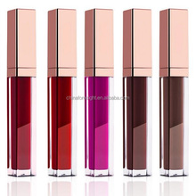 import opportunities free samples oem make up liquid lip stick