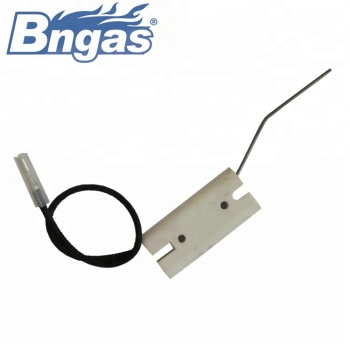 B4406 burner flame sensor gas