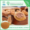 China factory supply agaricus blazei powder 50% polysaccharides PURE natural