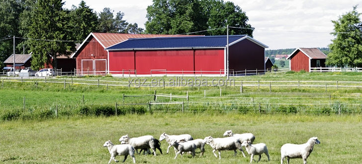 steel structure sheep stable farming