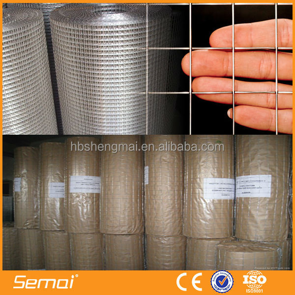 Welded wire mesh/plastic welded mesh roll/pvc coated welded wire mesh roll