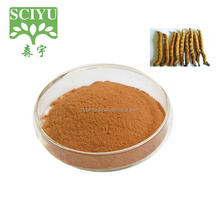 100% Natural Cordyceps sinensis extracts powder cordyceps sinensis price
