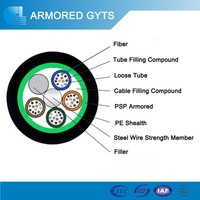 Overhead/ Pipeline/ Direct buried Fiber Optic Cable GYTS/ GYTA