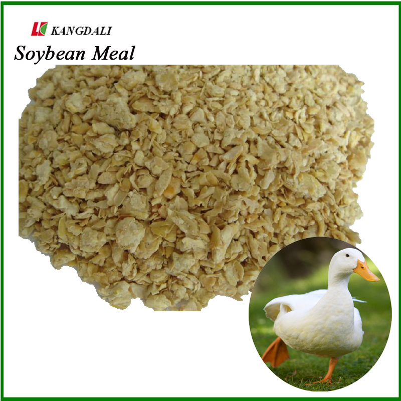 Soybean Meal, poultry feed additives, duck of poultry