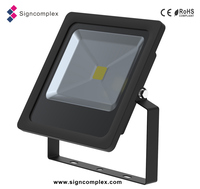 2016 projector ip65 30W COB LED FLOOD LIGHT with CE ROHS