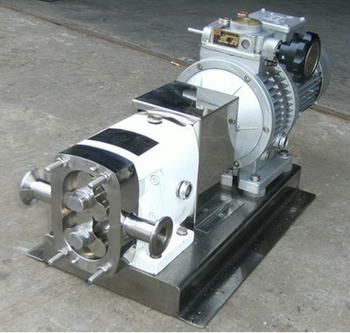rotary pump for liquid Peppermint flavoured syrup raw material transfer pump