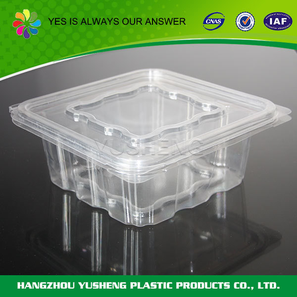 Transparent disposable plastic container frozen food packaging,container food