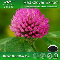 Hot sale Plant extract Red clover P.E/Red clover powder extract/Red clover powder