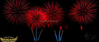 GOOD QUALITY RED PALM WITH CRACKLE PISTIL 6 INCH DISPLAY CE SHELL FIREWORKS