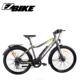 36V 250W Gear Motor City Type Bicycle Electric Bike Cruiser E Bike