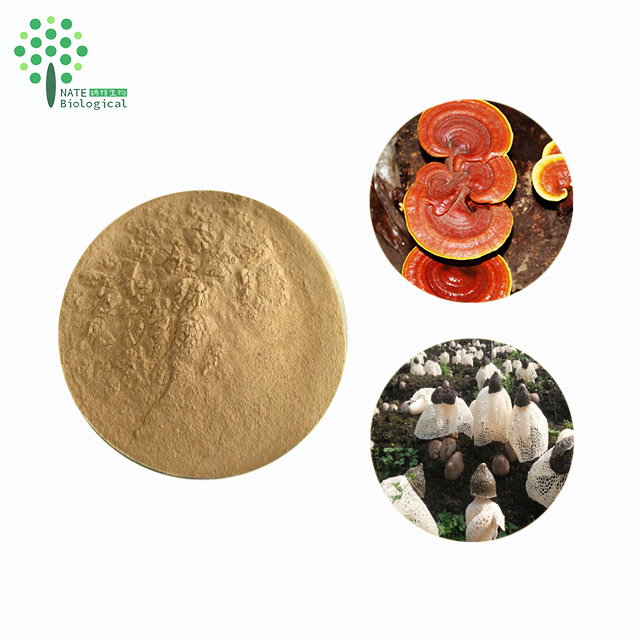 Amazing Anti-Cancer Fungus extract Phallus indusiatus extract Polysaccharide 30% 50% Fruiting body