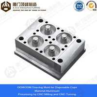Xiamen A.S.E OEM Manufacturing Mold Parts for non melting plastic
