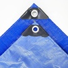 /product-detail/waterproof-pe-pvc-tarpaulin-hdpe-plastic-sheet-cover-for-greenhouse-62195100549.html