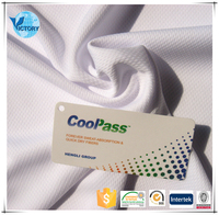 Polyester Dry Fit Sports Fabric Bird Eye Breath Functional Coolpass Micro Geo Mesh Fabric