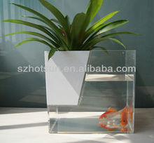 Multi-function acrylic fish tank with potted plant