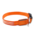 LED dog collar TZ-PET5000U Light up dog collar with double-line round optical fiber +Waterproof, bright colorful light