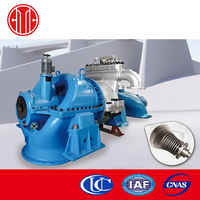 Condensing Steam Turbine Biogas Plant Generate Electricity