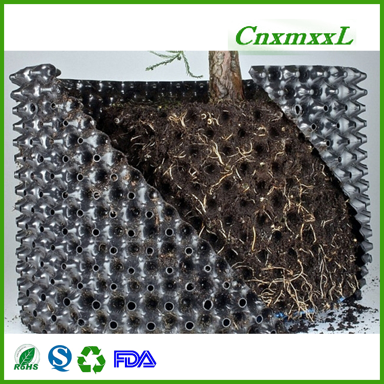 Widely used superior quality single plastic root trainers