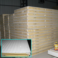 Cold storage polyurethane panels 100mm thick