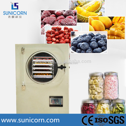 Low cost mini vacuum freeze dryer machine/freezing drying machines for vegetables and food