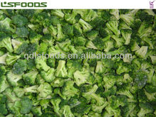 good quality IQF Broccoli Frozen Broccoli