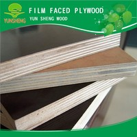 8mm high quality full poplar core commercial plywood sheet at wholesale price