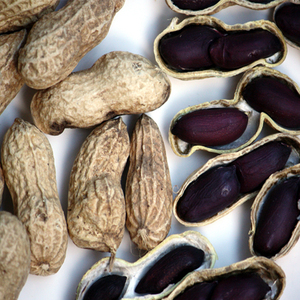 High Quality Nut Seeds Black Color Skin Peanut Raw