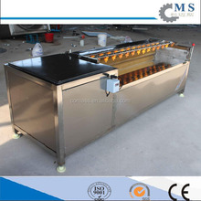 Peanuts cleaning machine lettuce washing machine