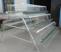 large-scale automatic poultry farm design chicken cage systems